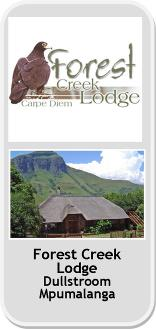 Forest Creek Lodge & Spa